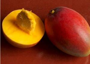 Tis The Season To Eat Mangos…