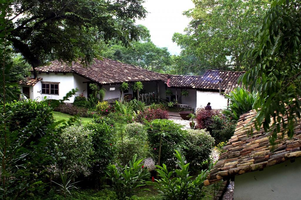Hacienda San Lucas Yoga